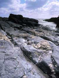 Photograph of cart tracks at Prussia Cove