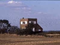 Photograph of Shades House, Dartford Marshes
